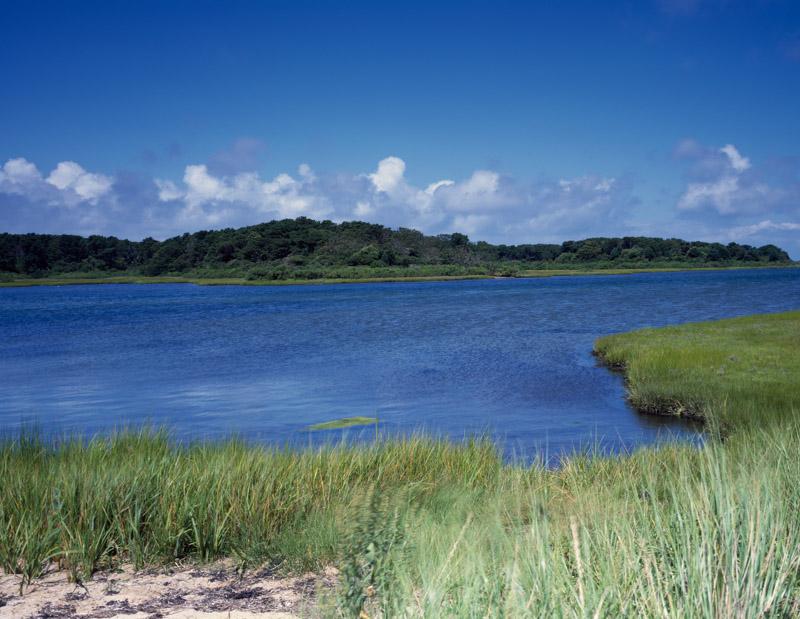 photo-salt-marsh-near-beaufort-south-carolina.jpg
