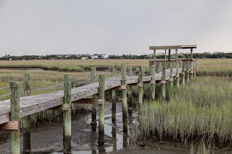 photo-scene-on-marshy-pawleys-island-a-barrier-island-in-south-carolina.jpg