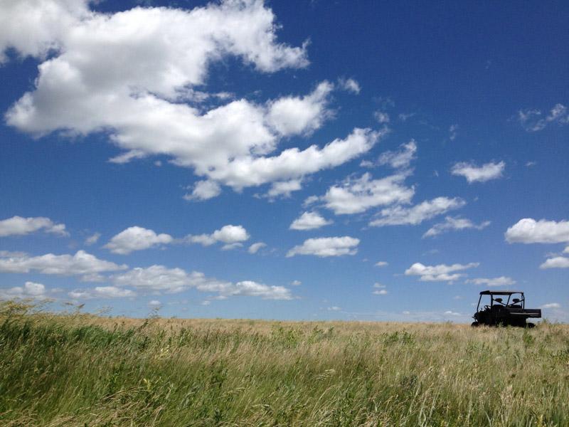 photo-field-with-blue-sky-south-dakota.jpg