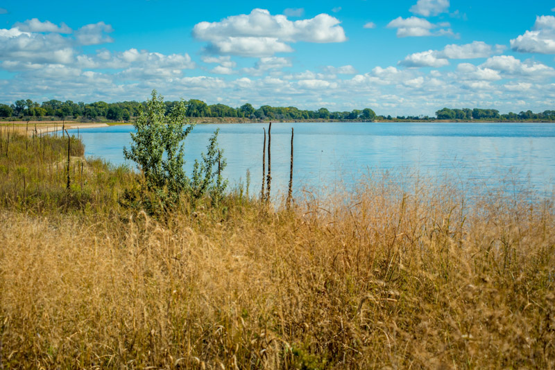 photo-native-grasses-along-banks-of-missouri-river-south-dakota.jpg