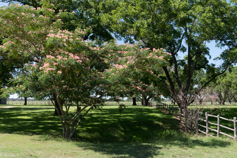 photo-grounds-of-the-lyndon-b-johnson-ranch.jpg
