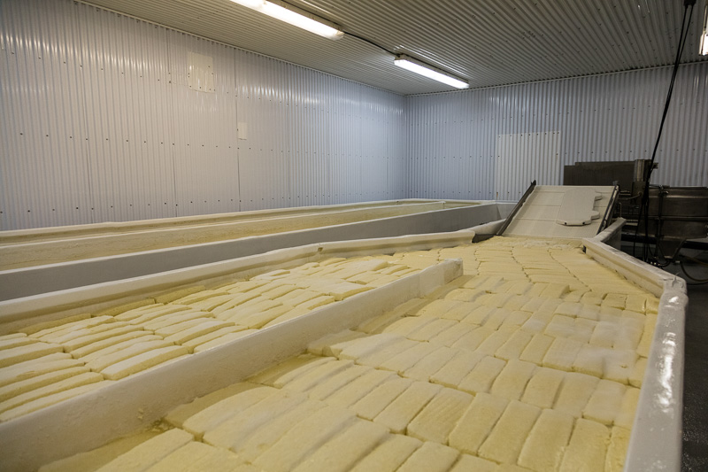 cheese-plant-in-wisconsin.jpg