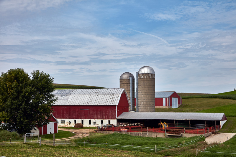 dairy-farm-in-dane-county-wisconsin.jpg