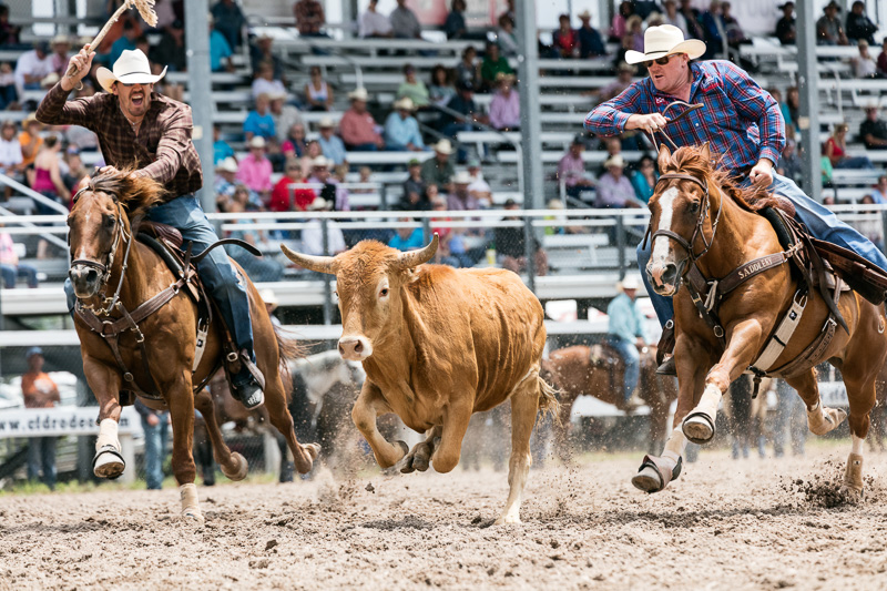 rodeo-action-at-the-cheyenne-frontier-days.jpg
