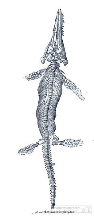 dinosaur-illustration_222A.jpg