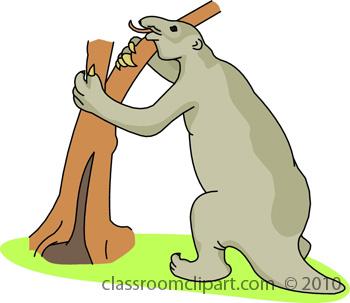 dinosaur_8610_58.jpg