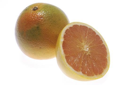 grapefruitA.jpg