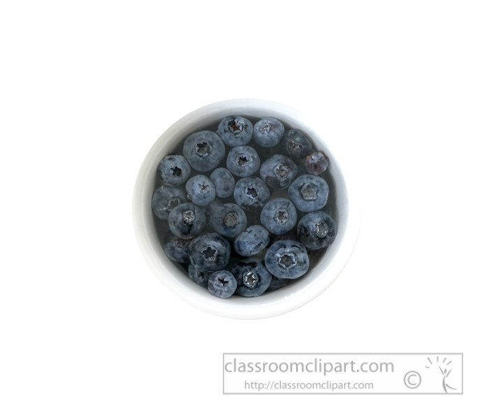 small-bowl-blueberries-photo-object-image-9343.jpg