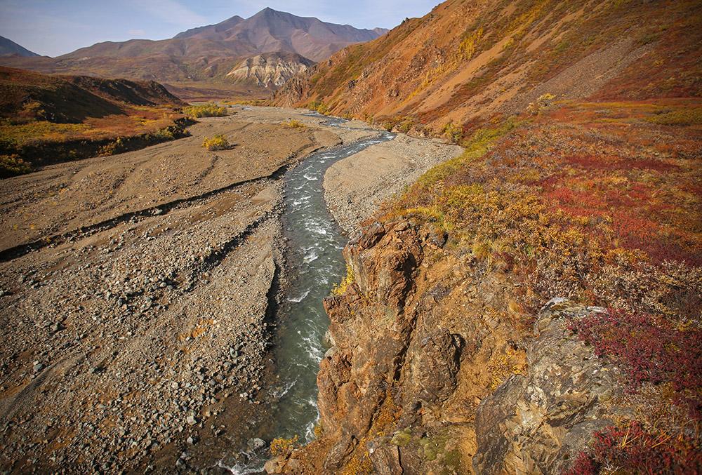 fall-colors-begin-around-big-stony-creek-denali-alaska.jpg
