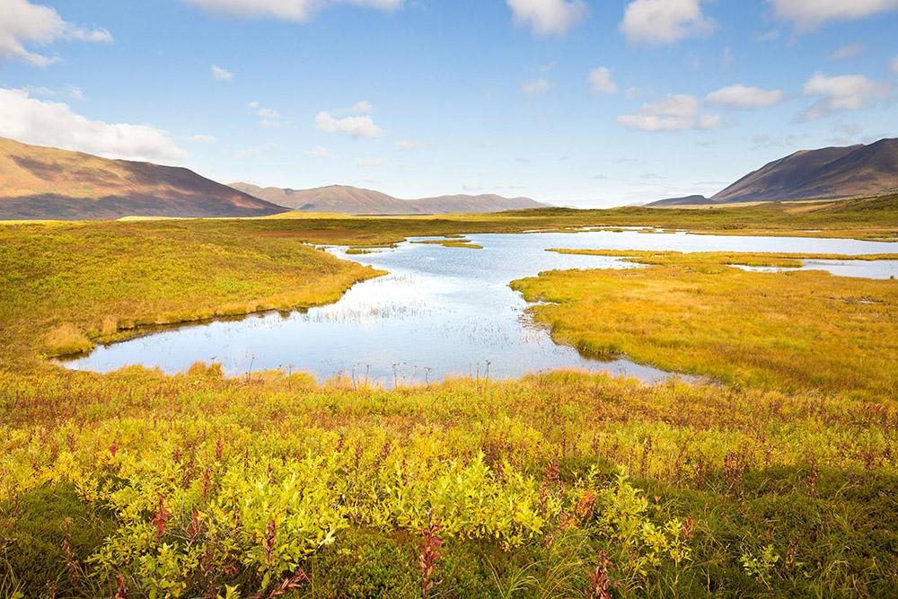 photo-scenic-view-of-beautiful-kodiak-national-wildlife-refuge.jpg