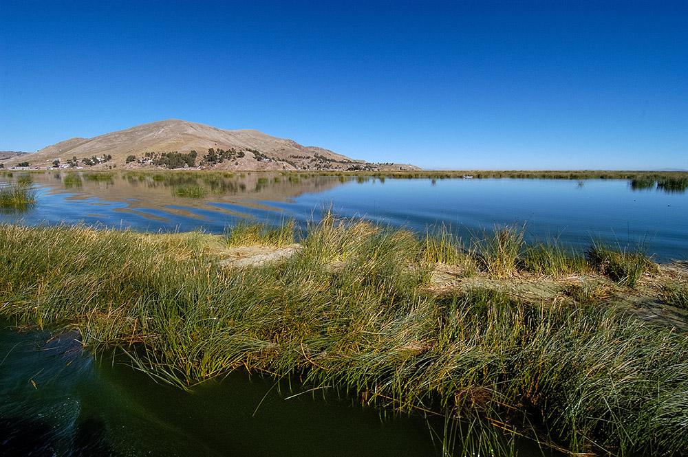 tortora-reeds-lake-titicaca-photo-0016a.jpg
