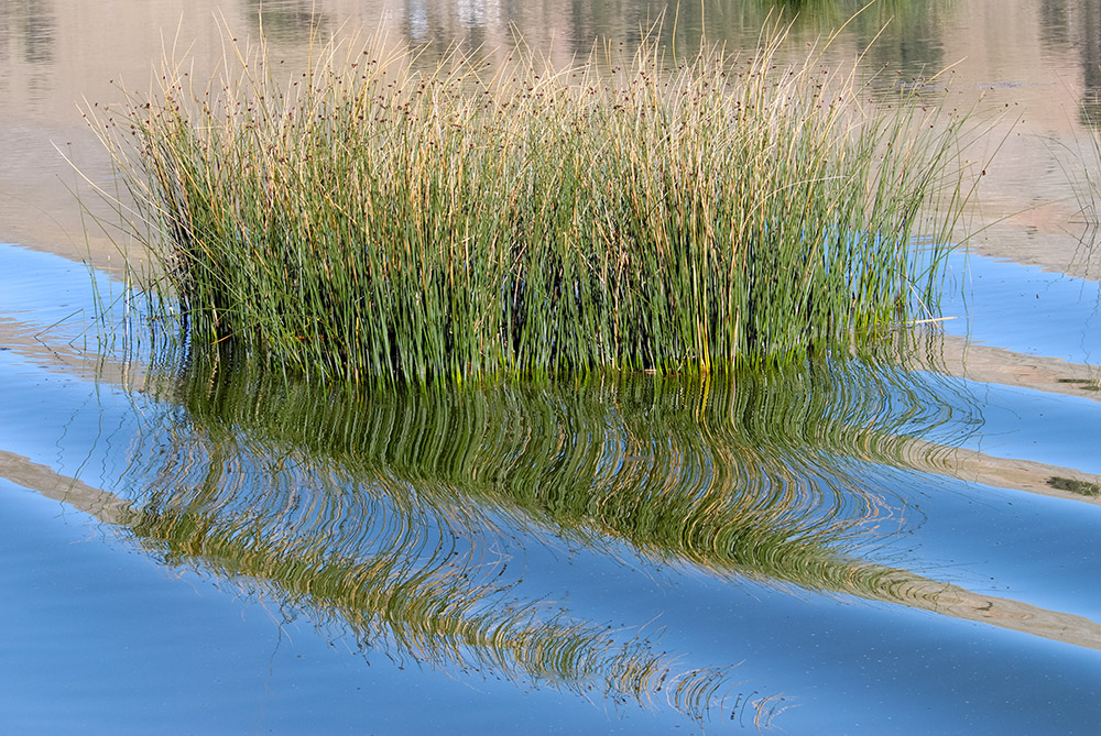 tortora-reeds-uros-island-lake-titicaca-415a.jpg