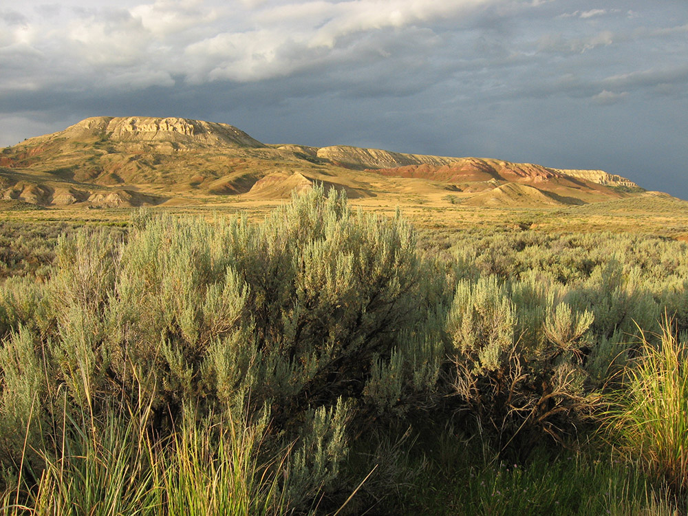 fossil-butte-is-capped-by-limestone-deposited-by-ancient-fossil-lake.jpg