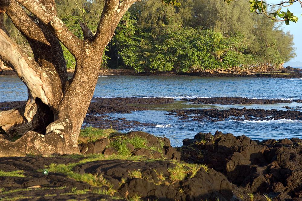 lava-field-extends-into-the-ocean-hawaii.jpg