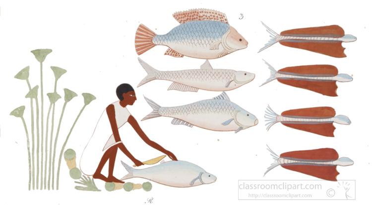 egyptian-cleaning-and-preparing-fresh-fish.jpg