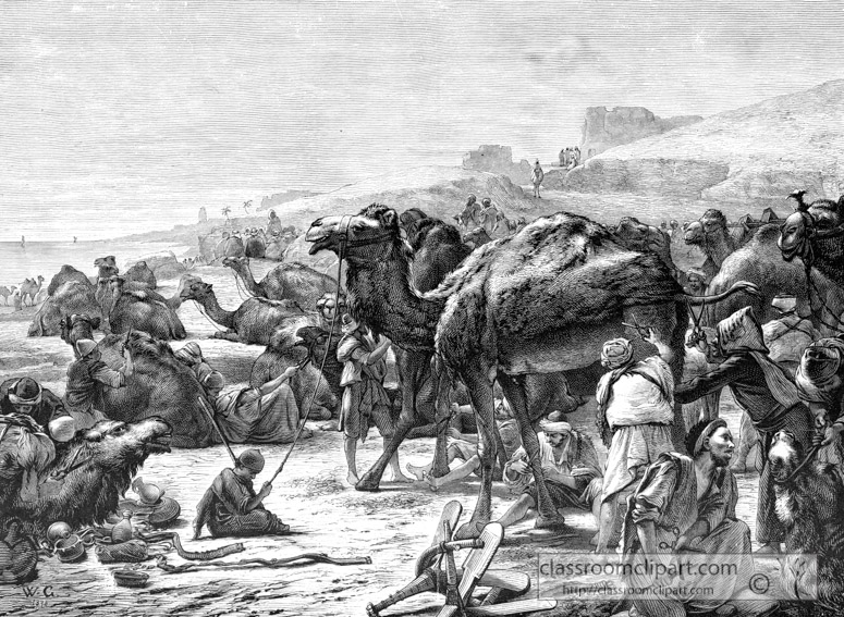 camels-in-the-egyptian-desert_056a.jpg