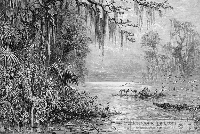 scene-in-florida-historical-illustration-01a.jpg