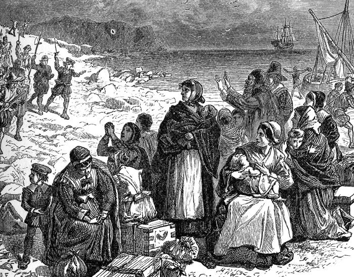 puritans-historical-illustration.jpg