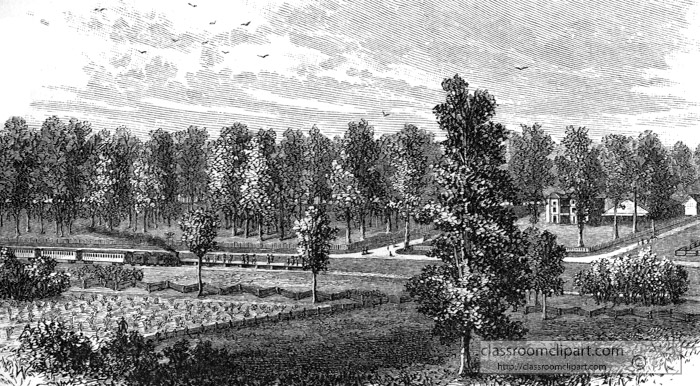 illustration-of-the-battlefield-at-tippecanoe-1811.jpg