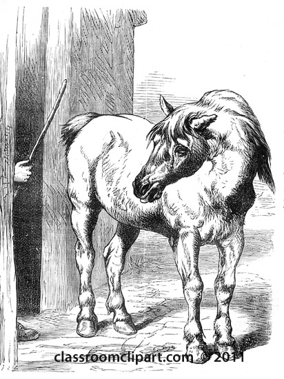 horse_in_stable_552a.jpg