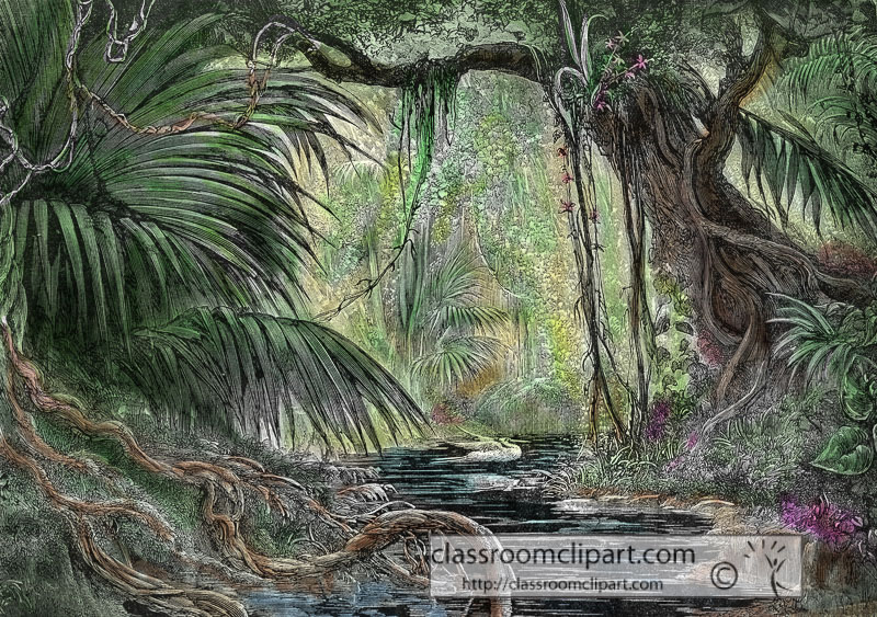 peru-forest-historical-illustration-w3-316AA.jpg
