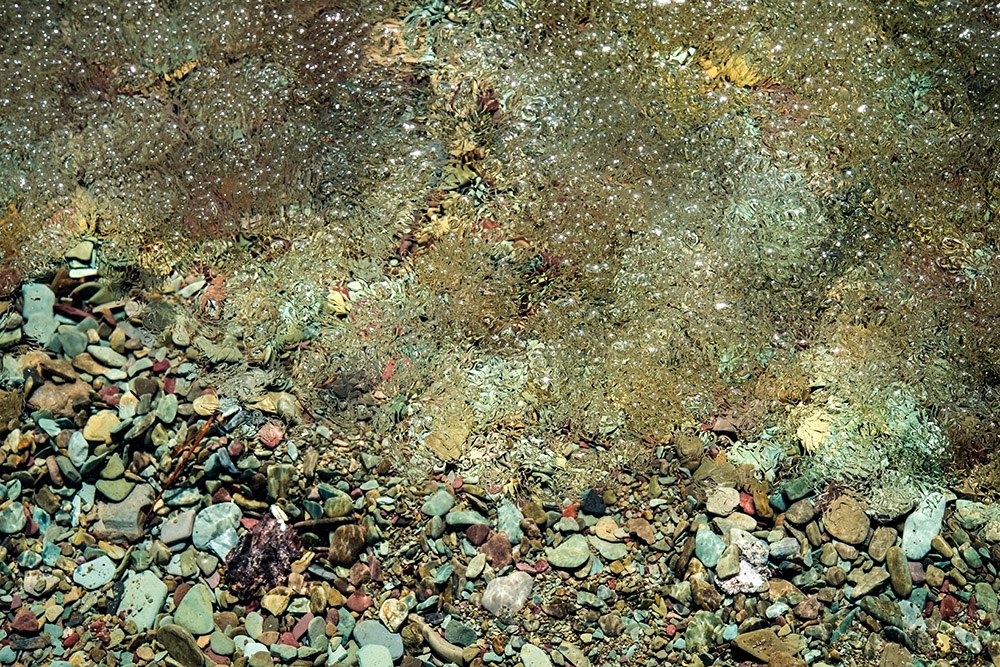 water-pattern-with-pebbles-closeup.jpg