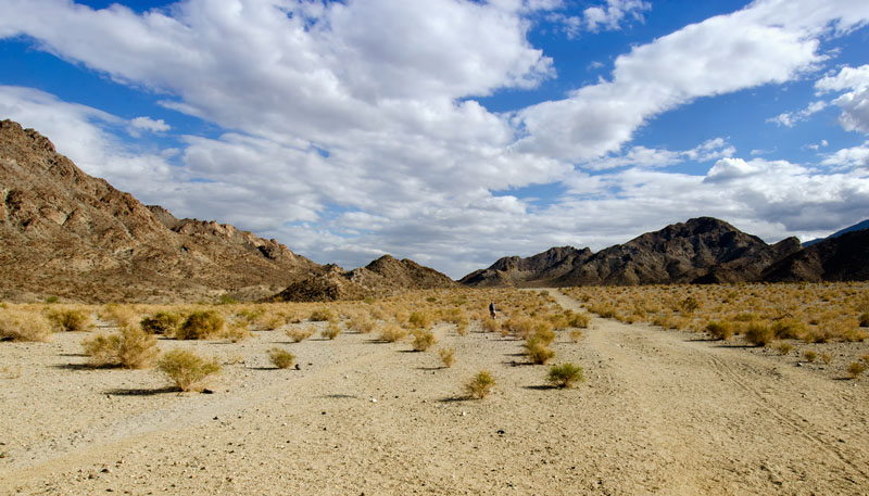 palm_desert_mountain_983-2.jpg