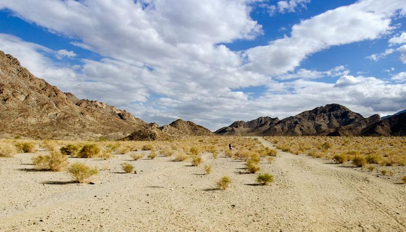 palm_desert_mountain_983-2a.jpg