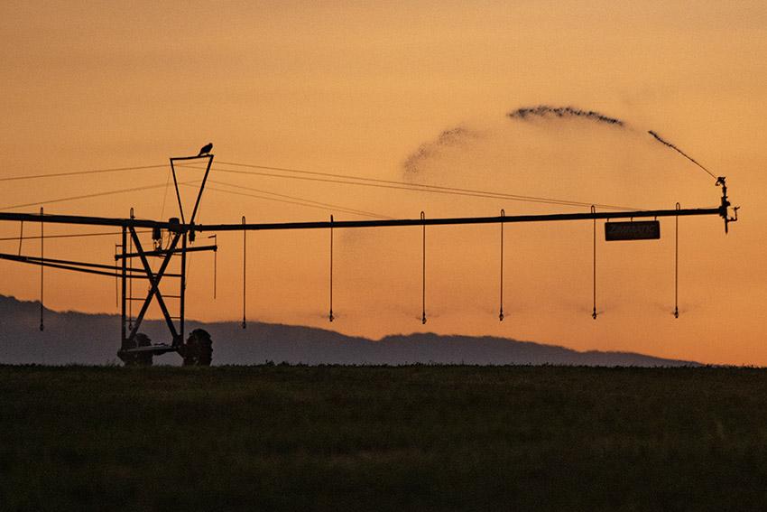 sunrise-pivot-irrigation-system-2.jpg