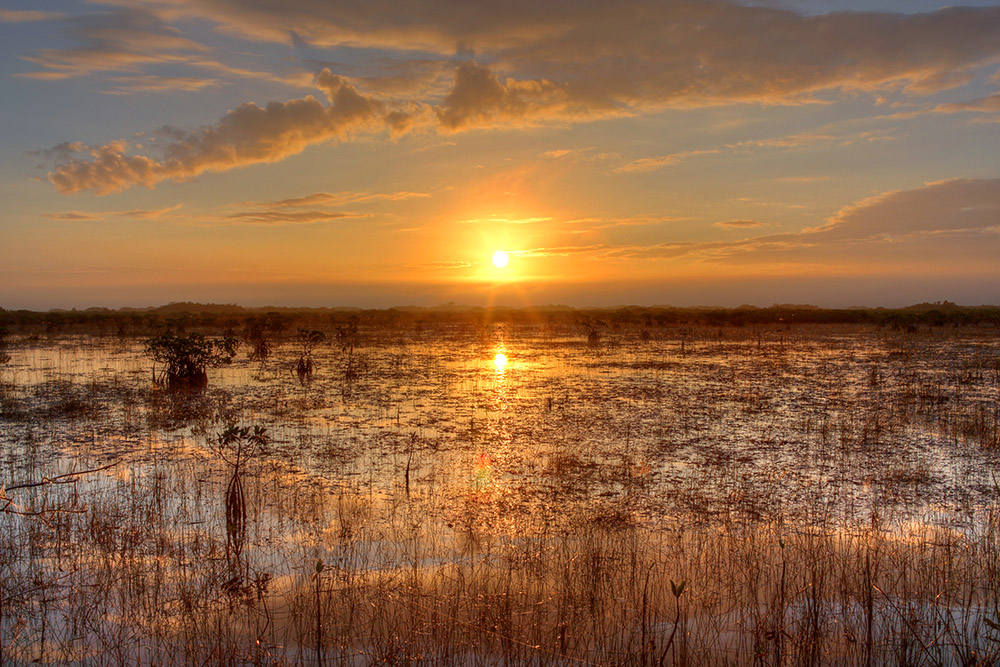 sunset-over-the-river-of-grass-florida.jpg