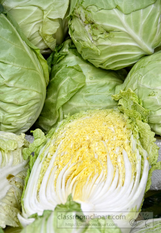 cabbage-heads-outdoor-markets-shanghai-china-photo-image-19.jpg