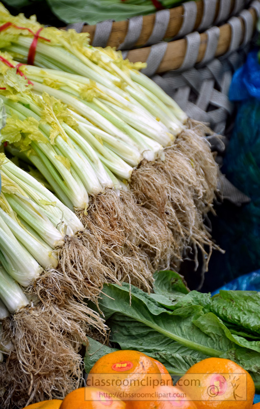celery-bunches-other-vegetable-oranges-outdoor-market-shanghai-china-photo-image-12.jpg