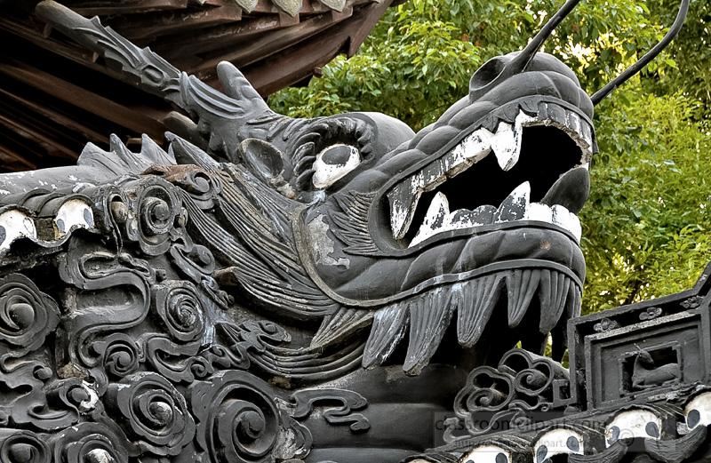 dragon-Yu-Yuan-Garden-sphoto-image-75.jpg