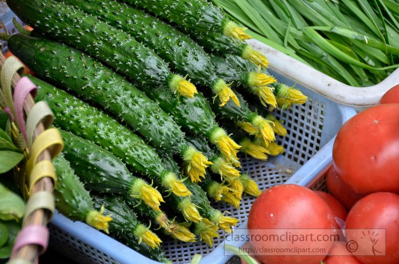 kerela-bitter-melon-edible-fruit-photo-image-17.jpg