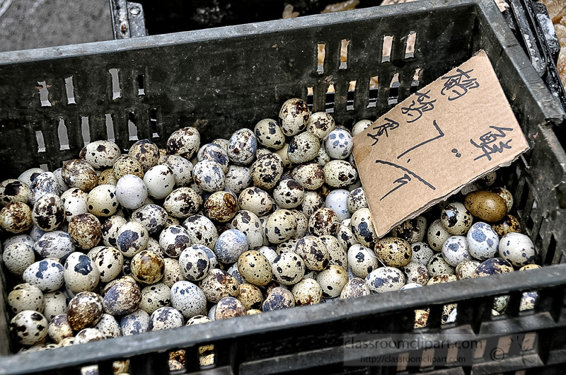 resh-quail-eggs-in-wicker-baskets-for-sale-market-photo-image-57A.jpg