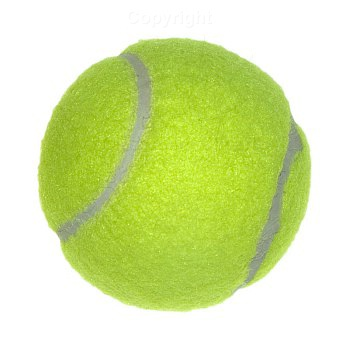 tennis-ball1.jpg