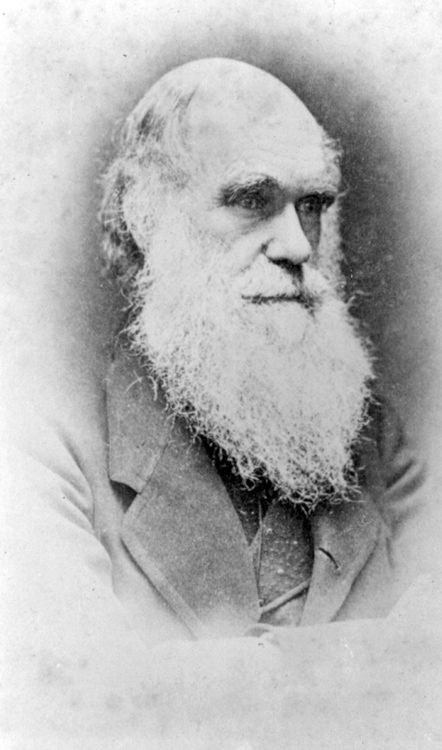 Charles-Darwin-portrait-photo-image.jpg
