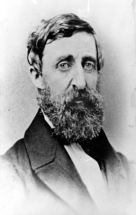 Henry-Thoreau-portrait-photo-image.jpg