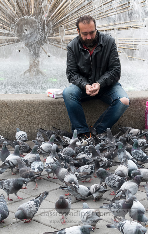 man-feeding-pigeons-oslo-norway-photo-image-1762Ab.jpg