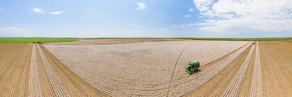 aerial-panorama-oview-of-cotton-harvesting.jpg