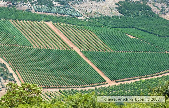 agriculture_greece.jpg