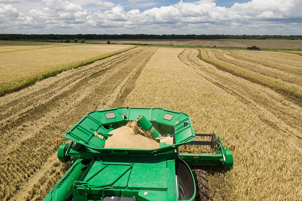 combine-harvesters-rice-harvester.jpg