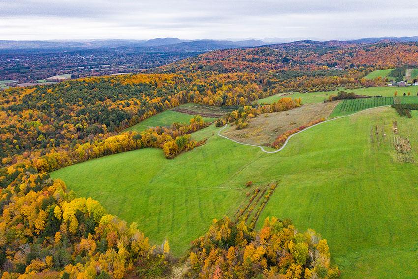 fall-color-aerial-view-of-trees-orange-yellow-massashusetts.jpg