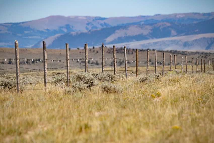 fenceline-on-a-ranch-mountains-in-background.jpg