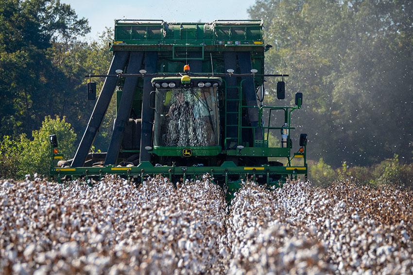 machine-cotton-operation.jpg