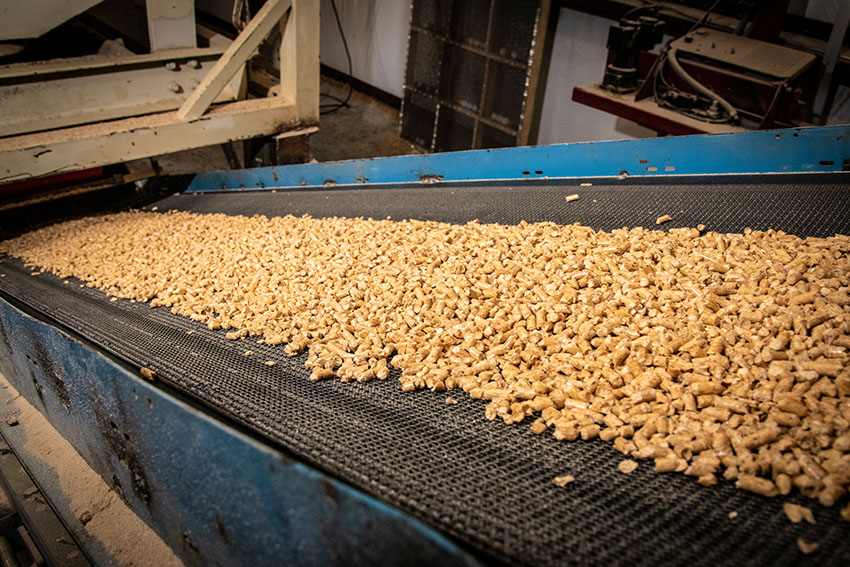 mill workers produce wood pellets for heating.jpg