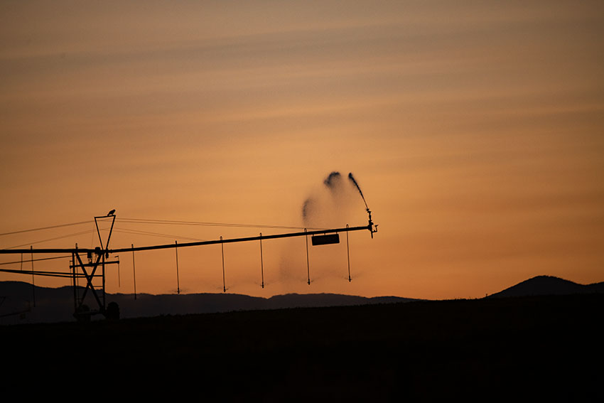 pivot-irrigation-in-fields-at-sunset.jpg