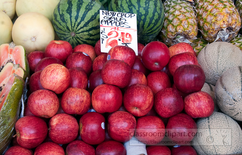 fres-red-gala-apples-at-farmers-market-photo-image-570.jpg