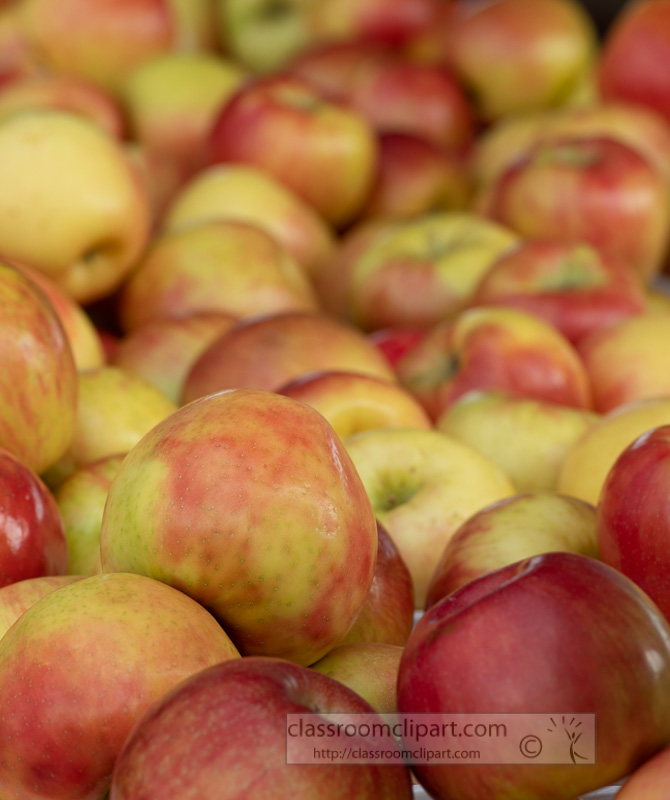 red-and-yellow-apples-at-the-farmers-market-0133-2.jpg