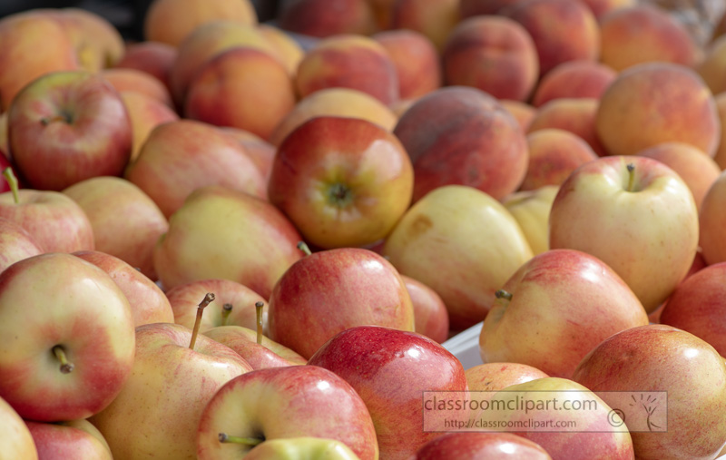 red-and-yellow-apples-at-the-farmers-market-500135.jpg